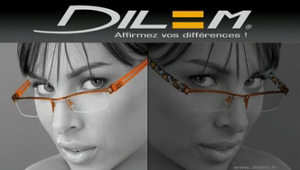 dilem french frames colours